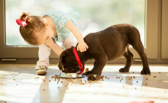 Nên cho trẻ nhỏ ăn thực phẩm… rơi xuống sàn