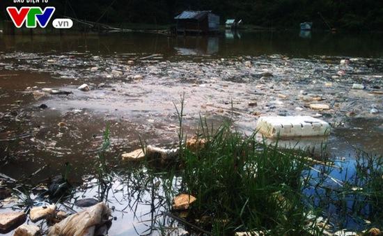 Đà Lạt: Tái diễn ô nhiễm nguồn nước từ rác thải nông nghiệp