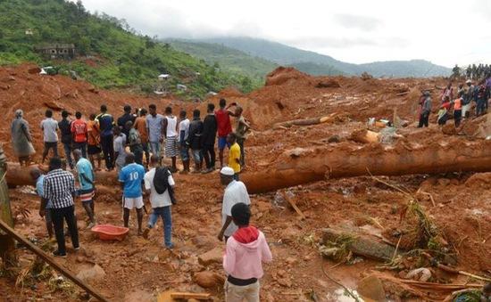 Số ca tử vong do lở đất ở Sierra Leone tiếp tục tăng cao
