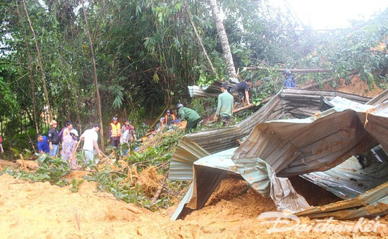Quảng Nam: Di dời người dân vùng sạt lở Bắc Trà My