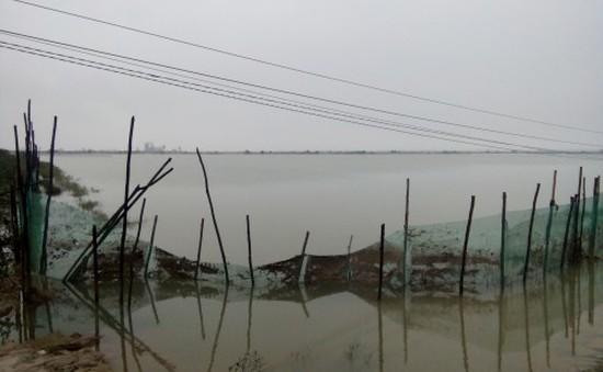 Hàng loạt hồ nuôi tôm tại phá Tam Giang (TT-Huế) bị bỏ hoang