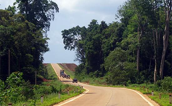 Quảng Nam đưa vào sử dụng tuyến đường nối liền Đông Trường Sơn