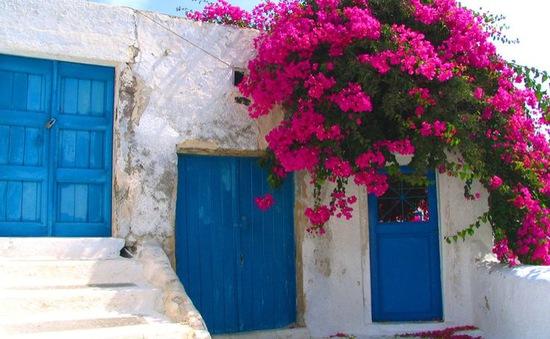 Sắc hồng hoa giấy tô điểm vẻ đẹp của Santorini