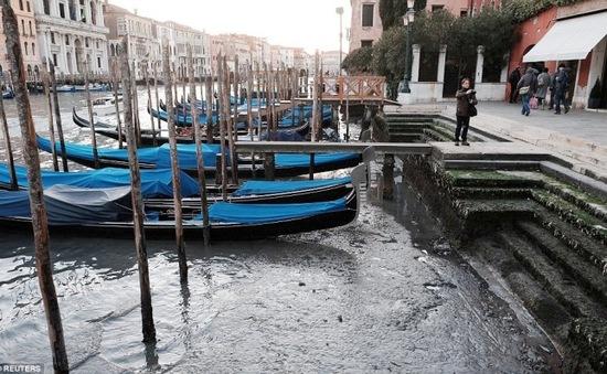 """Thành phố """"nổi"""" Venice, Italy dần khô cạn trầm trọng"""