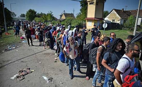 Hy Lạp: Tinh thần của người di cư trong các trại tị nạn suy sụp trầm trọng