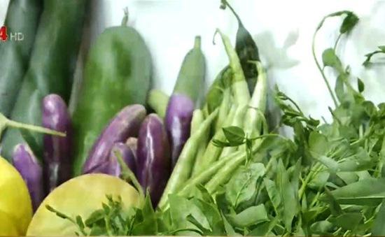 Hỗ trợ thanh niên nông thôn khởi nghiệp nông nghiệp sạch