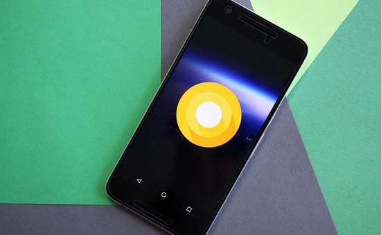 Google sẽ trình làng Android O vào ngày 21/8 vì lý do không thế tin nổi