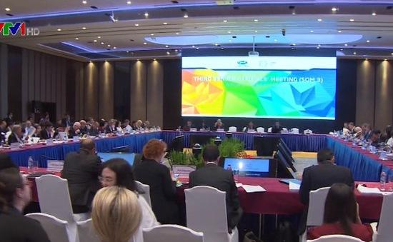 Khai mạc Hội nghị quan chức APEC lần 3