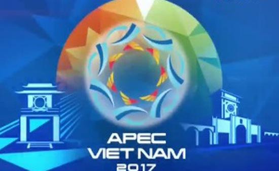 Chặng đường 28 năm phát triển APEC