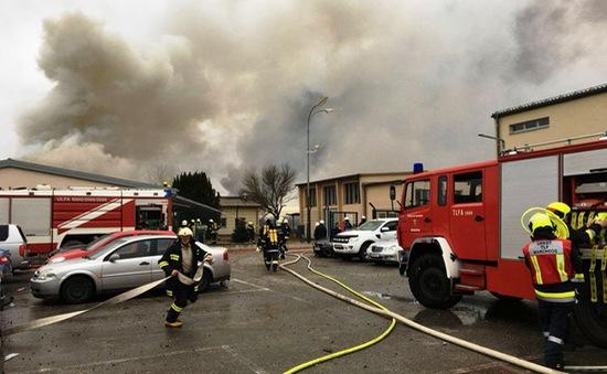 Nổ đường ống dẫn khí đốt tại Áo, 19 người thương vong