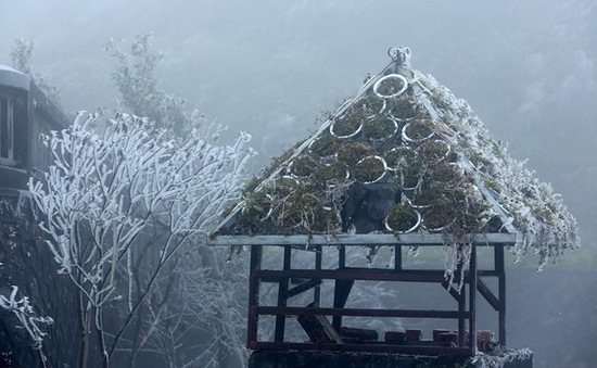 Giá lạnh tại Sa Pa, Lào Cai