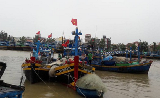 Phú Yên: Hàng trăm tàu thuyền bị chìm dù đang ở khu neo đậu