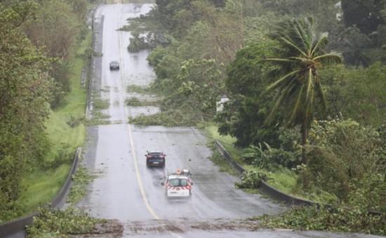 Bão Maria tàn phá khu vực Caribbean