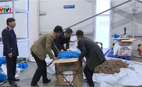 Bắt giữ lượng lớn vẩy tê tê và ma túy tại cửa khẩu Nội Bài