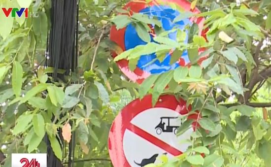 Nhiều biển báo giao thông ở TP.HCM đánh đố người đi đường