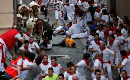 Tây Ban Nha: Bò tót húc 5 người nhập viện trong lễ hội đấu bò