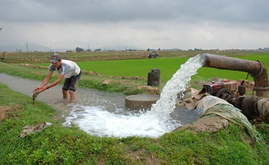 Bắc Bộ kết thúc lấy nước đổ ải vụ Đông Xuân