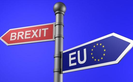 Brexit có thể đẩy ngân sách EU vào giới hạn nguy hiểm