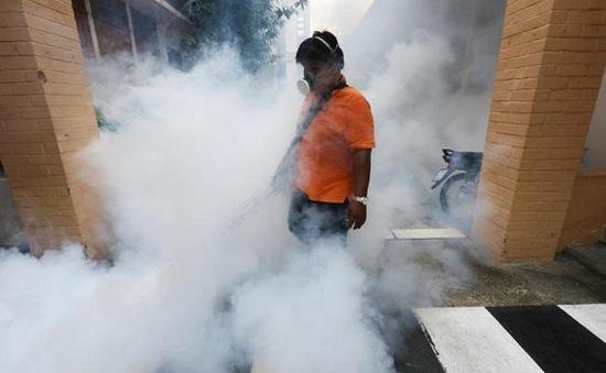 Thái Lan xác nhận 11 ca nhiễm Zika mới