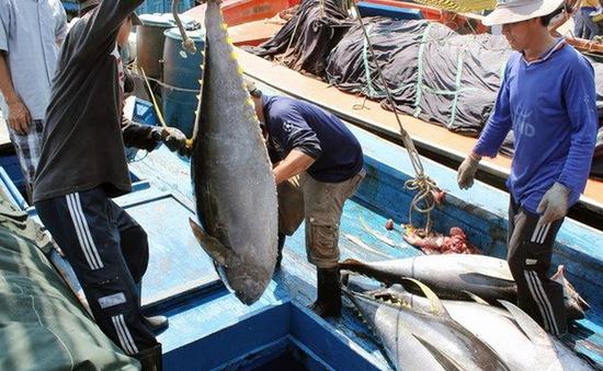 Tác động từ chương trình giám sát thủy sản nhập khẩu của Mỹ