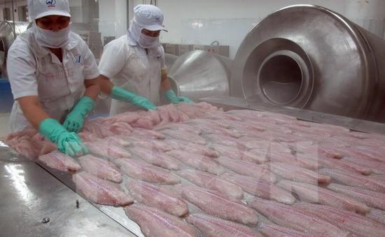 Quy định mới về tỷ lệ mạ băng cá tra xuất khẩu