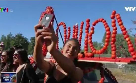 Sôi động lễ hội ném cà chua tại Chile