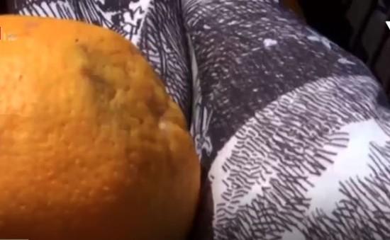Vải lụa làm từ vỏ cam – Bạn có tin?