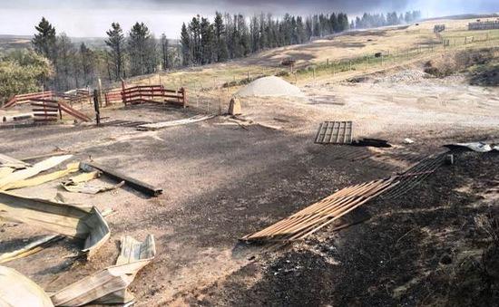 Cháy rừng bùng phát dữ dội ở Canada