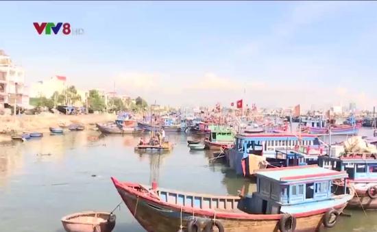 Khánh Hòa đầu tư, nâng cấp mở rộng các cảng cá