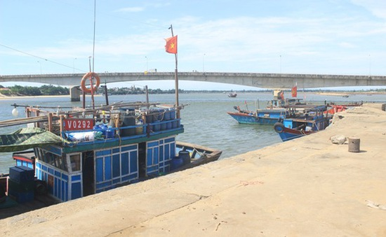 Hôm nay, Hội nghị toàn quốc về cảng cá theo khuyến nghị của EC
