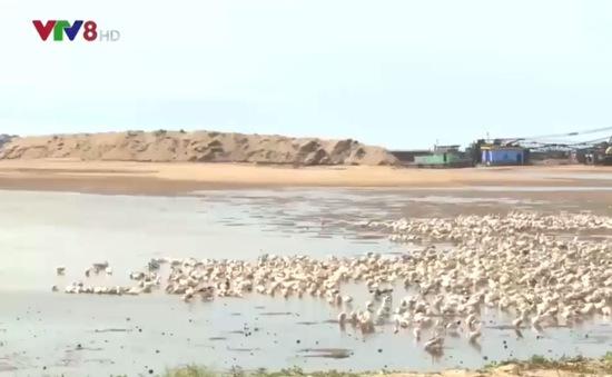 Phú Yên tiến hành nạo vét thông luồng cảng Đông Tác
