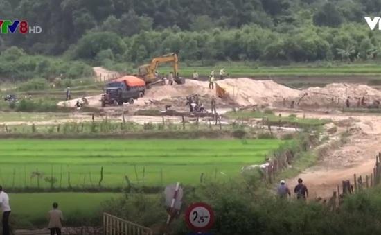 """""""Loạn"""" giá cát ở các mỏ khai thác tại Vĩnh Long"""