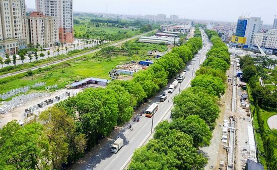 Làm sao để vừa phát triển Thủ đô vừa bảo tồn cây xanh?