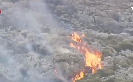 Cháy rừng nghiêm trọng tại Tây Ban Nha, nhiều gia đình phải di tản