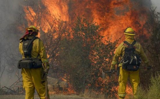 Số người thiệt mạng do cháy rừng tại California, Mỹ tăng lên 40