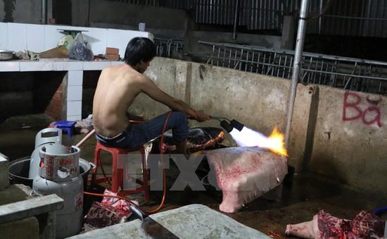 Bình Phước: Phát hiện cơ sở biến thịt lợn nái thải thành lợn rừng lai