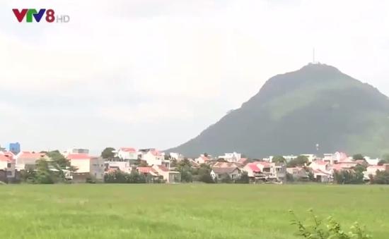 Phú Yên quy hoạch vùng, làng nghề nuôi chim yến