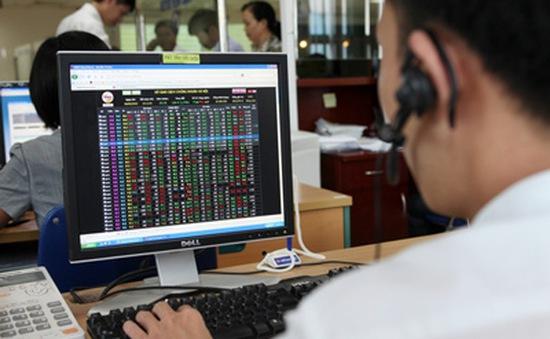 Chỉ số VN-Index chạm mốc 800 điểm, quay lại đỉnh 10 năm
