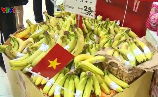 Các thị trường khó tính chuộng chuối Việt Nam