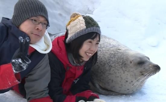 Chụp ảnh cùng hải cẩu ở thủy cung Hokkaido, Nhật Bản