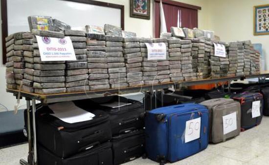 Hy Lạp thu giữ 1,6 tấn ma túy chiết xuất từ cây gai dầu