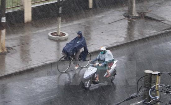 """Cơn mưa """"vàng"""" góp phần hạ nhiệt tại Quảng Nam"""