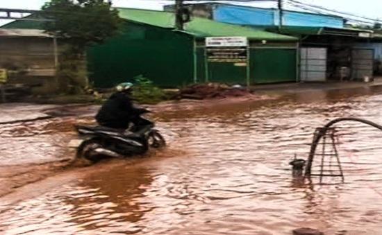 Lâm Đồng: Người dân dùng máy bơm nước...để chống ngập tuyến quốc lộ!