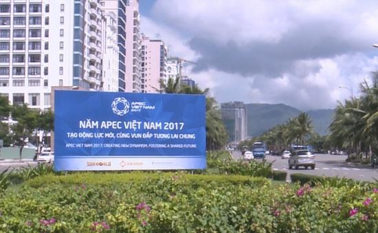 """Những """"con đường ngoại giao"""" phục vụ APEC tại Đà Nẵng"""