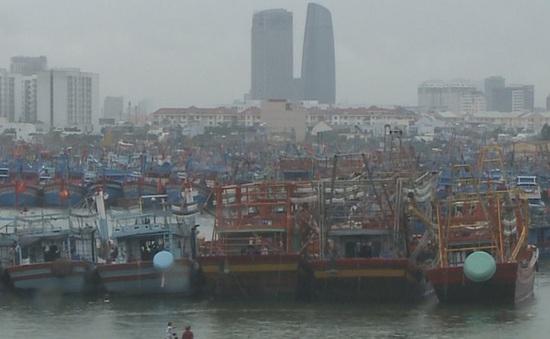 Ngư dân Đà Nẵng không chủ quan trước áp thấp nhiệt đới