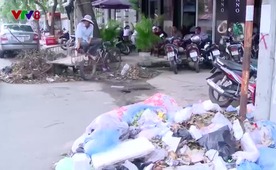 Phú Yên: Huy động tổng lực giải quyết rác thải tồn đọng sau bão
