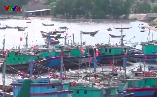 Hiệu quả đánh bắt thủy sản của tàu vỏ sắt tại Quảng Trị