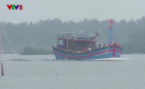 Hiệu quả từ những chính sách hỗ trợ ngư dân