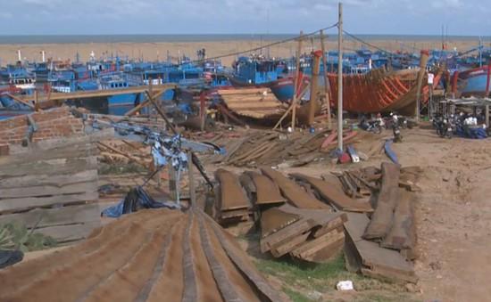 """""""Cơn sốt giá"""" gỗ đóng sửa tàu cá, bè thủy sản"""