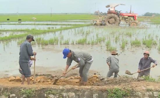 Phú Yên: Khắc phục khẩn cấp kênh mương kịp gieo sạ vụ Đông Xuân